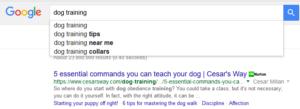 Blogging keyword research